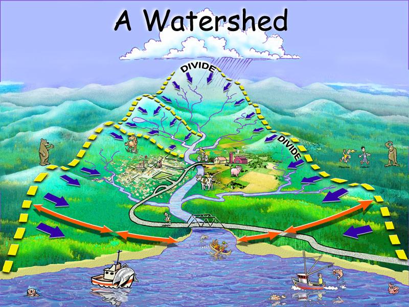 The Chesapeake Bay Watershed - Terrapin Adventures